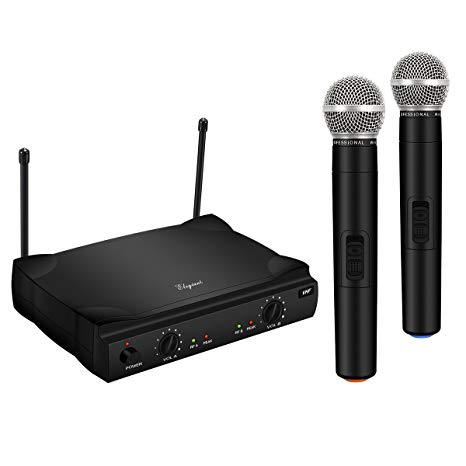 ELEGIANT Dual Wireless Microphone