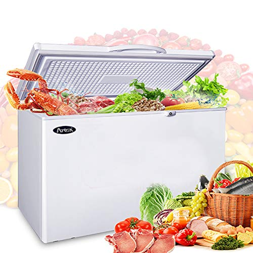 Commercial Top Chest Freezer by Atosa