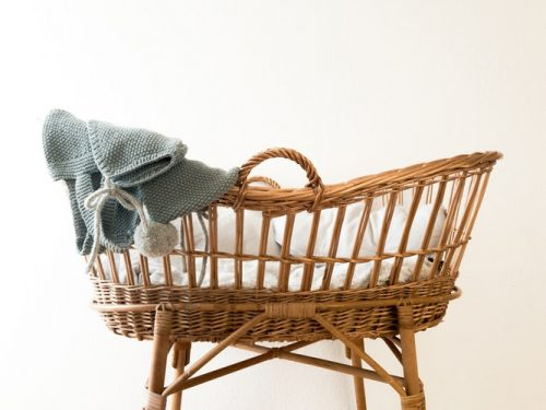 The pros and cons of Moses Basket