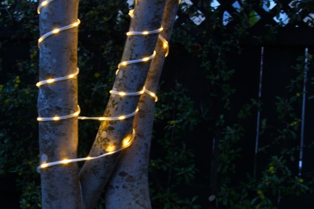 The Ultimate Guide To Solar Rope Light